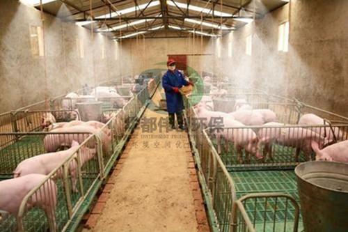 养殖场喷雾降温除臭消毒系统,养殖场喷雾除臭消毒系统,养殖场喷雾除臭消毒,喷雾除臭消毒系统